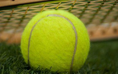 Mini Tennis Year 2,3 &4