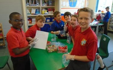 Enterprise Week – Year 5